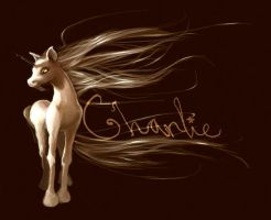 charlie the unicorn by Lollo