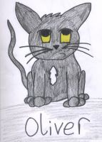 Oliver by Sunfall16