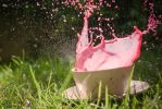 Pink explosion by Alessia-Izzo