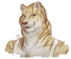 Liger quick doodle by Pinkuh