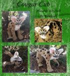 Cougar Cub Posable Art Doll by Eviecats