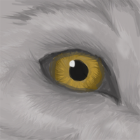 Wolf eye by coolsarahkry