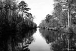 Dismal Canal by KBL3S
