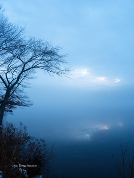 Fog Over Ice with Tree by Mogrianne