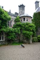 Stock - Gwydir Castle 4 by OghamMoon