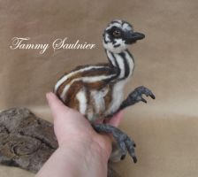 Pose-able Needle felted Emu Chick by Tammysoul