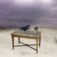 Why is a Raven Like a Writing Desk? by Fearshy