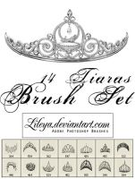 Tiaras brush set by Lileya