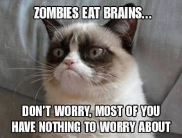 Grumpy cat and zombies by brycemaz