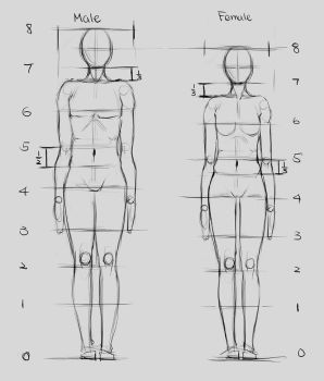 Proportions 1 by Renevatia