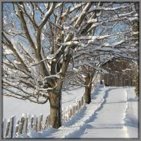 Snowy Lane Too by Rebacan