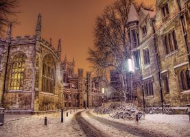 Slushy Cambridge by Pipera
