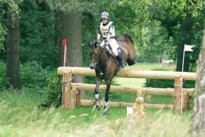 3DE Cross Country Log Fence Jump by LuDa-Stock