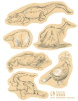 Toronto Zoo sketches by TRAVALE