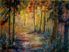 forest clearing by p-e-a-k