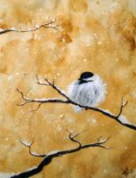 Cold Chickadee by Loriele
