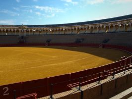 Seville Bull Fight Festival 03 by abelamario