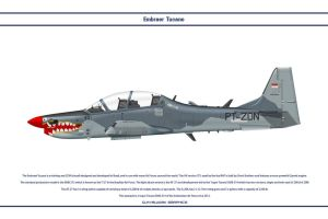 Tucano Indonesia 1 Dev by WS-Clave