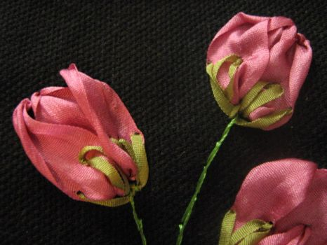 Silk ribbon embroidery 2 by EnnaEverbright