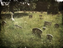 Brompton Cemetery, London by OkeMani