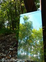 The Refection in the Mirror by Maryl0u