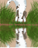 Reflection WIP by HiddenParadise1