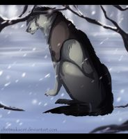 snows loneliness by ChetMakacet