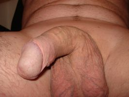 Dick 3 by Barefoot65