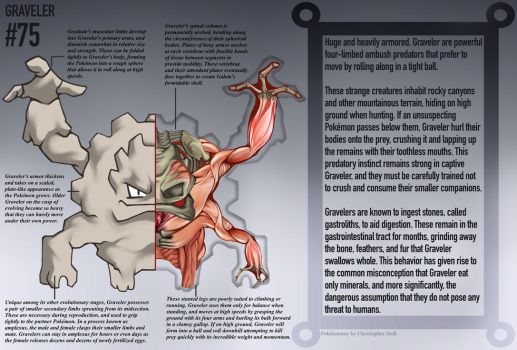 Graveler Anatomy- Pokedex Entry by Christopher-Stoll