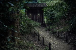 Hama Rikyu Door by Belatheros