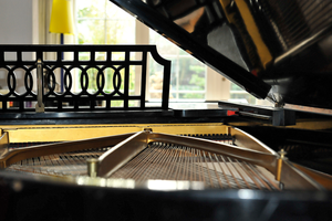 Composition of the Grand Piano by H4all