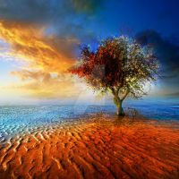 Insomnia by Teodora-Chinde