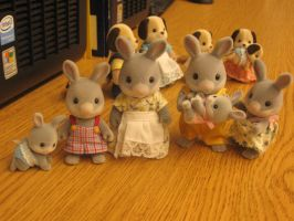 Cottontail Rabbits at CC by babyrainbou