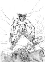 Wolverine sketch by BLACKBULLSEYE
