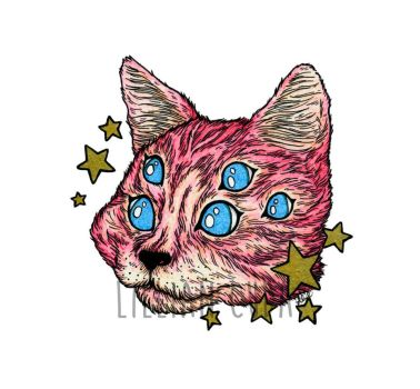 Pink Star Cat by witchhboy