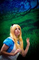 Alice: Wandering through Wonderland by KoriStarfire
