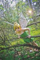 Tinker Bell cosplay 7 by Hanny-Senpai