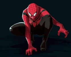 Spiderman - Redesign by leotyler