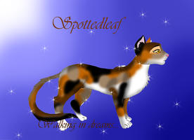 Spottedleaf by Moonflight-RiverClan