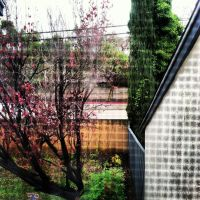 From My Window by Tespeon