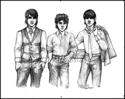 The Jonas Brothers by thecapturedspy