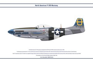 Mustang USAAF 3rd FS 1 by WS-Clave