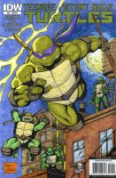 TMNT sketch cover by mdavidct