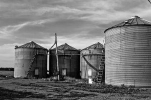 Grain bins by trekrider
