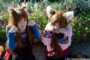 Twin Horo's :P by Foxy-Cosplay