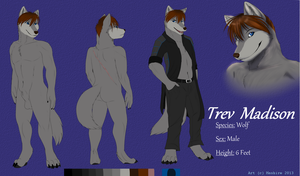 Trev Madison Reff Sheet by thatrevmans