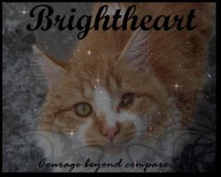 Brightheart- Courage by Brightpaw