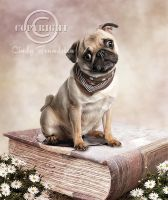 PUG by CindysArt
