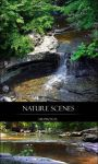 Nature Scenes by Ardenstock