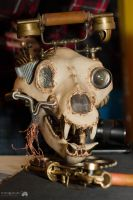 Skull-telephone. Steampunk by Jasumy